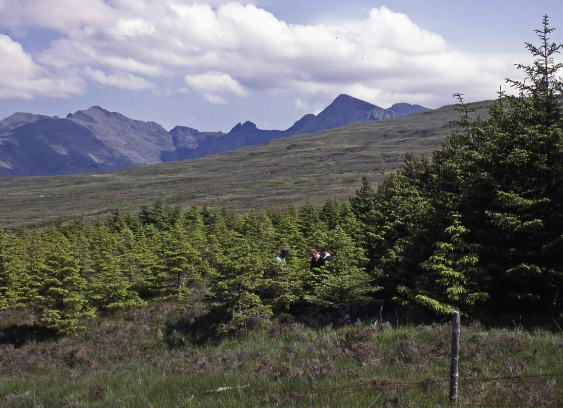 High Elevation Plot Gleneynort Skye
