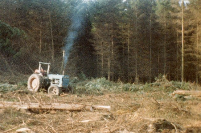 Extracting Timber by winch — Panmure Estate