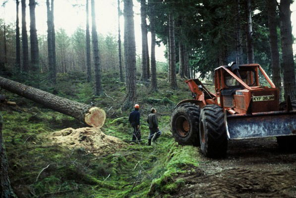 Timberjack Skidder